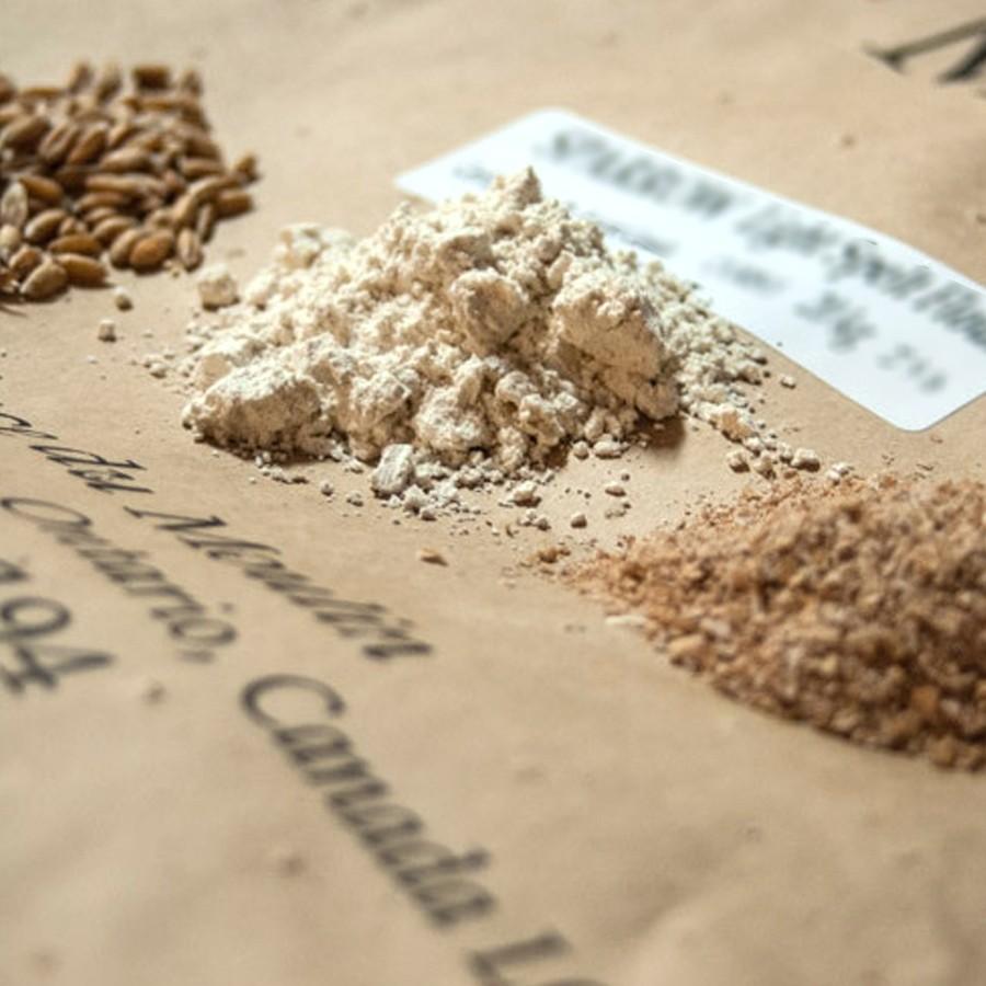 Premium Village Red Fife Flour 2kg Bag by K2 Milling