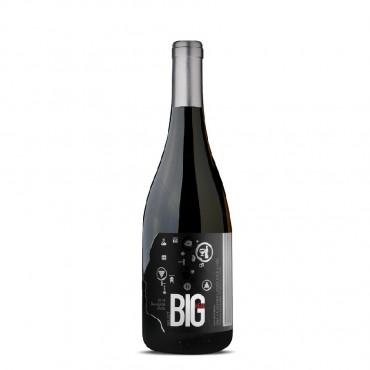 Sauvignon Blanc Select VQA by Big Head 2019