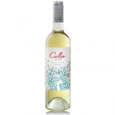 Callia Alta Pinot Grigio by Bodega Salentein 2019