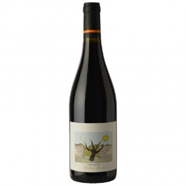Champs Pentus Faugeres by Domaine Frederic Brouca 2019