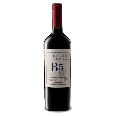 Malbec B5 Boron by Viniterra 2019