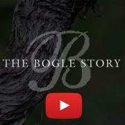 The Bogle Story