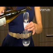 Vinturi White Wine Aerator featuring Tenley Molzhan